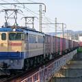 Photos: 5087レ【EF65 2092牽引】