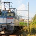 Photos: 72レ【EF65 2083】