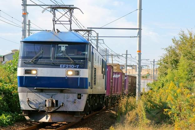 8056レ【EF210-7】