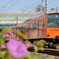 桜島線 201系