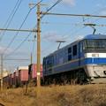 Photos: 77レ【EF210-312牽引】