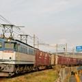 Photos: 74レ【EF65 2057牽引】