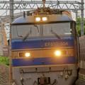 Photos: 4076レ【EF510-504牽引】