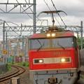 Photos: 83レ【EF510-19牽引】