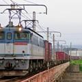 Photos: 5087レ【EF65 2086牽引】