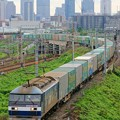 Photos: 1051レ【EF210-116牽引】