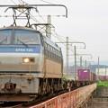 Photos: 遅83レ【EF66 125牽引】