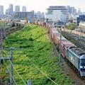 Photos: 69レ【EF210-133牽引】