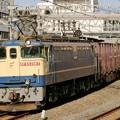 Photos: 84レ【EF65 2067牽引】