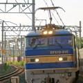 Photos: 4076レ【EF510-515牽引】