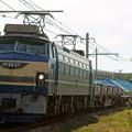 Photos: 配6866レ【EF66 27牽引】