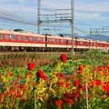 Photos: 近鉄 大阪線