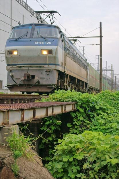 55レ【EF66 125牽引】