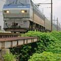 Photos: 55レ【EF66 125牽引】