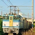 74レ【EF65 2127牽引】