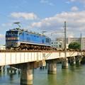 Photos: 配1392レ【EF510-501牽引】