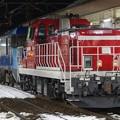 Photos: EH200 9+DD200 901 東新潟機関区貸出配給