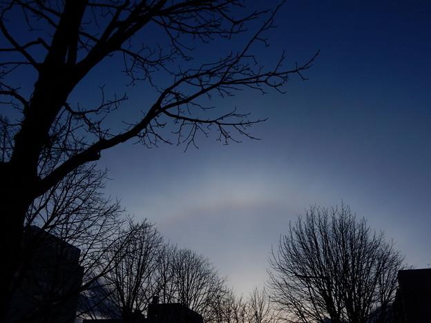 Photos: 夕暮れの日暈