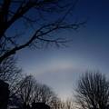 写真: 夕暮れの日暈