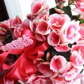 Photos: 母の日のプレゼント