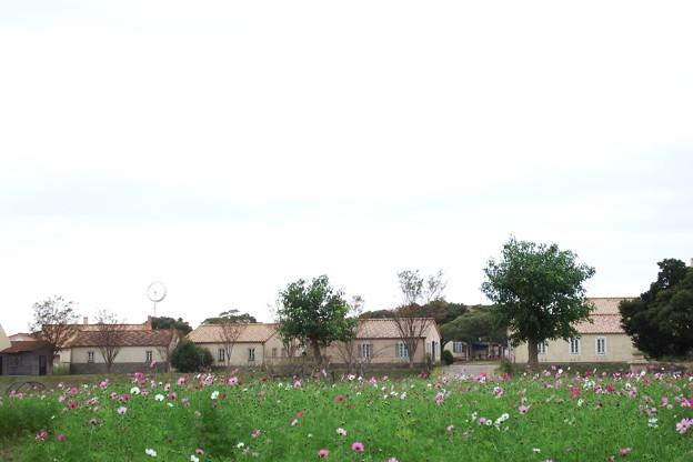 あぐりの丘の建物