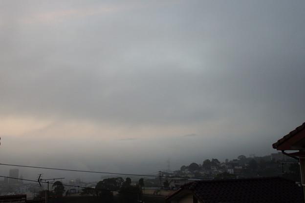靄の中 1