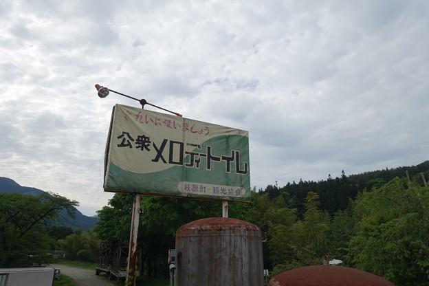 写真: DSC04828