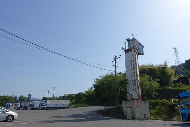 写真: DSC05229