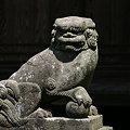 写真: 網戸の狛犬