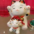 Photos: 招き猫