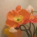 待合室の花