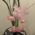 写真: 待合室の花