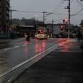 Photos: 雨中