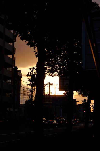 Photos: 落陽