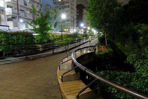 目黒川緑道の夜