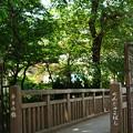 Photos: 〈千手小橋から東小川橋篇〉