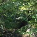 写真: 清願院橋に至る 2