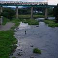 写真: 阿岩橋を渡る