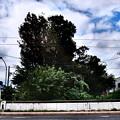 写真: そして喜平橋