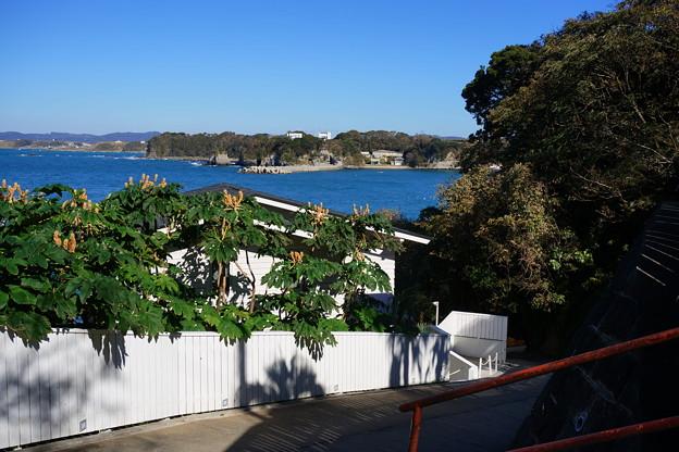 Photos: 続 海へ続く坂道
