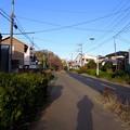 Photos: 先ずは境・狭山緑道