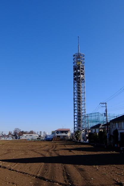 畑越しのスカイタワー