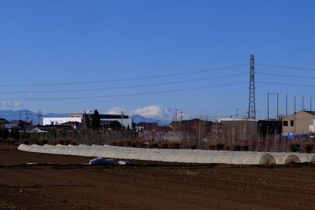 富士山が見えるスポットあり