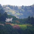 Photos: 都幾川 (29)