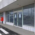 Photos: 向日葵 (3)