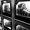 Photos: 泳ぐ靴