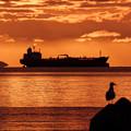 Photos: 錨泊船