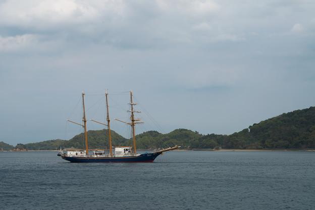 帆船 入港