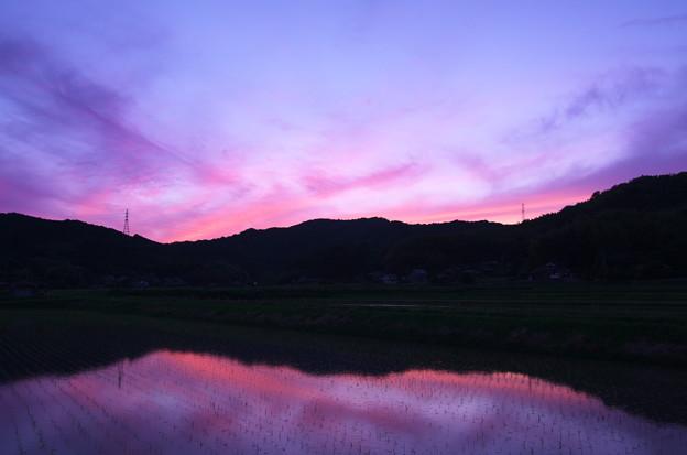 水辺の夕焼け