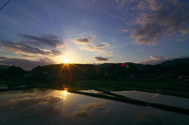夕陽を映して